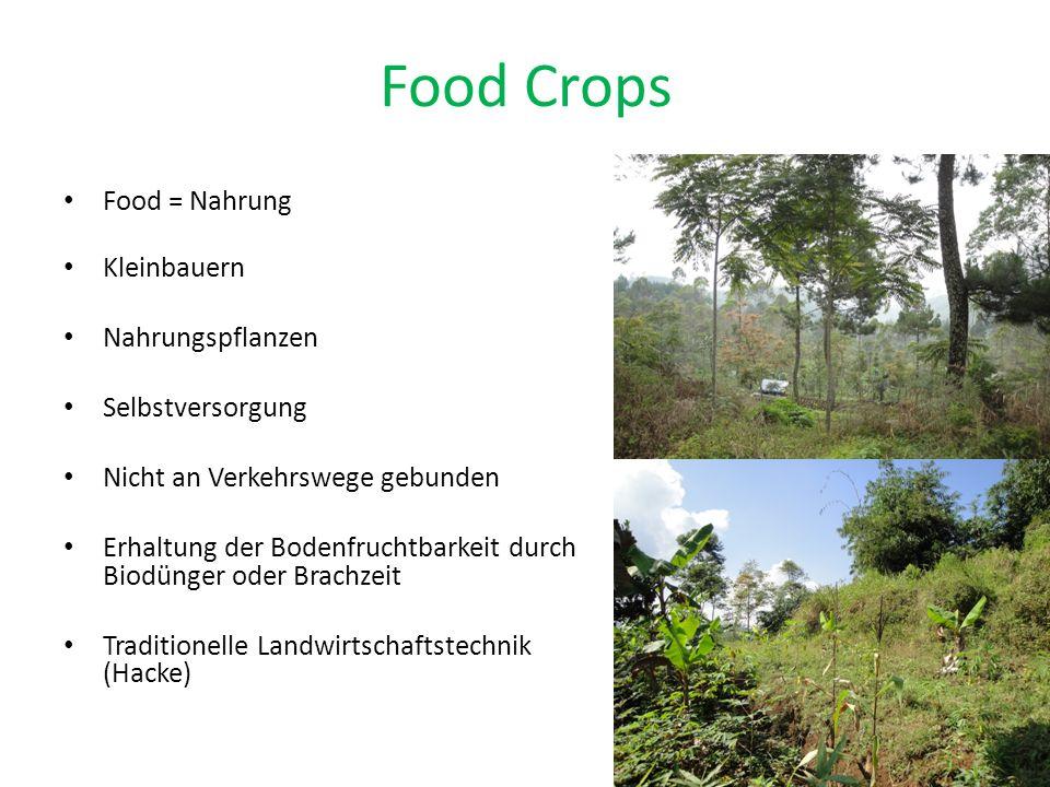 Food Crops Food = Nahrung Kleinbauern Nahrungspflanzen Selbstversorgung Nicht an Verkehrswege gebunden Erhaltung der Bodenfruchtbarkeit durch Biodünger oder Brachzeit Traditionelle Landwirtschaftstechnik (Hacke)