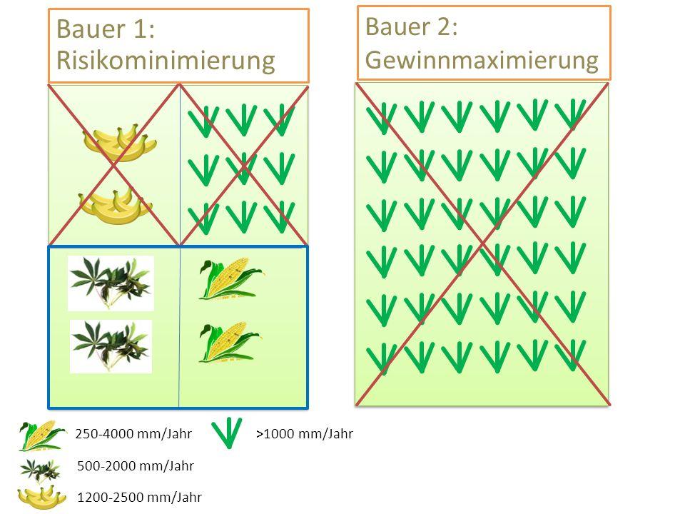 250-4000 mm/Jahr 500-2000 mm/Jahr 1200-2500 mm/Jahr >1000 mm/Jahr Bauer 1: Risikominimierung Bauer 2: Gewinnmaximierung