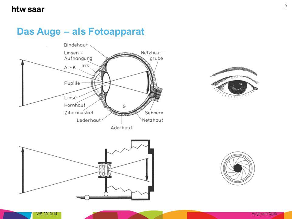 Das Auge – optische Daten Brechung durch –Hornhaut (ca.