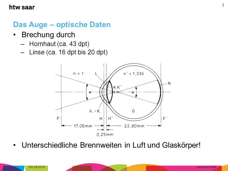 Das Auge – optische Daten Brechung durch –Hornhaut (ca. 43 dpt) –Linse (ca. 16 dpt bis 20 dpt) Unterschiedliche Brennweiten in Luft und Glaskörper! WS
