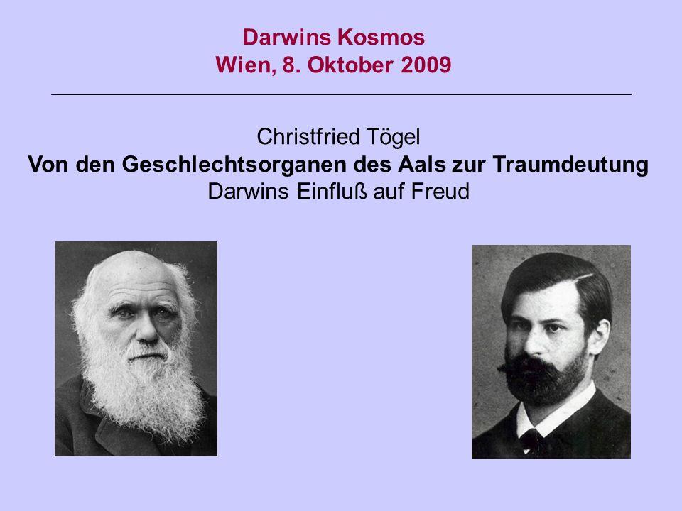 Christfried Tögel Von den Geschlechtsorganen des Aals zur Traumdeutung Darwins Einfluß auf Freud Darwins Kosmos Wien, 8. Oktober 2009