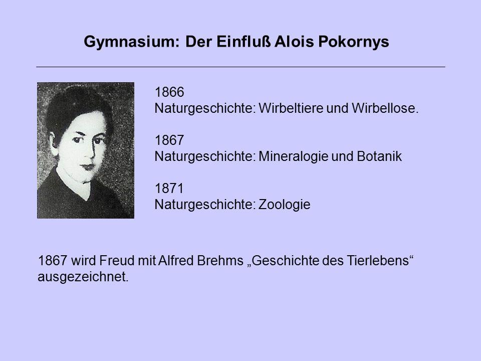 1866 Naturgeschichte: Wirbeltiere und Wirbellose. 1867 Naturgeschichte: Mineralogie und Botanik 1871 Naturgeschichte: Zoologie Gymnasium: Der Einfluß