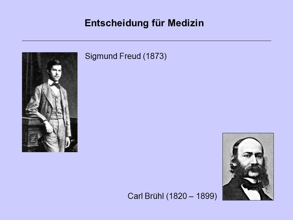 Carl Brühl (1820 – 1899) Sigmund Freud (1873) Entscheidung für Medizin
