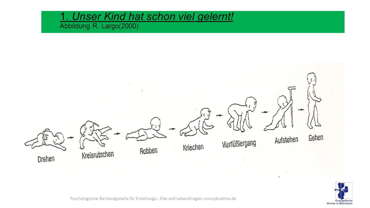 Verwendete Literatur: Kasten, H., (2008) :Soziale Kompetenzen, Cornelsen Wißkirchen, H., (2009): Gleichaltrige Miterzieher-die Peers.
