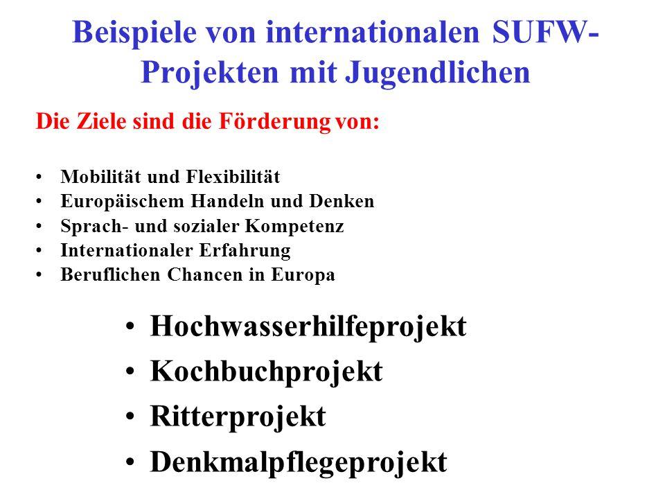 Beispiele von internationalen SUFW- Projekten mit Jugendlichen Die Ziele sind die Förderung von: Mobilität und Flexibilität Europäischem Handeln und Denken Sprach- und sozialer Kompetenz Internationaler Erfahrung Beruflichen Chancen in Europa Hochwasserhilfeprojekt Kochbuchprojekt Ritterprojekt Denkmalpflegeprojekt