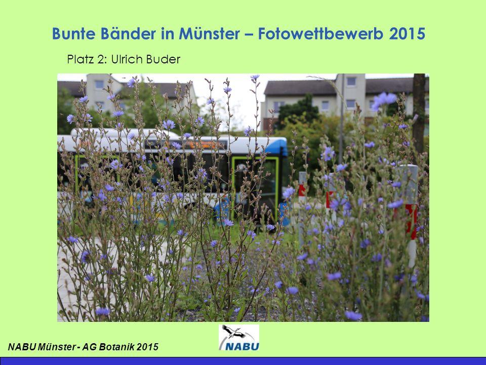 Bunte Bänder in Münster – Fotowettbewerb 2015 Platz 2: Ulrich Buder NABU Münster - AG Botanik 2015