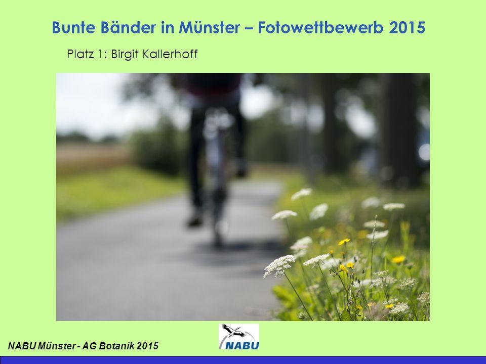 Bunte Bänder in Münster – Fotowettbewerb 2015 Platz 1: Birgit Kallerhoff NABU Münster - AG Botanik 2015