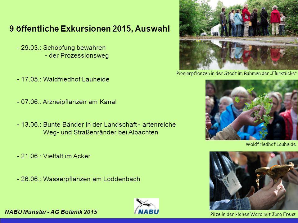 Sanktuarium (Herman de Vries) - Natürliche Sukzession seit der Ausstellung Skulptur.Projekte 1997 - Jährliche Bestandserfassung am 18.