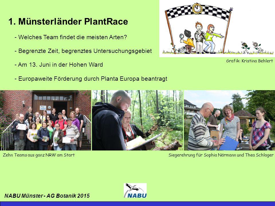 1. Münsterländer PlantRace - Welches Team findet die meisten Arten.
