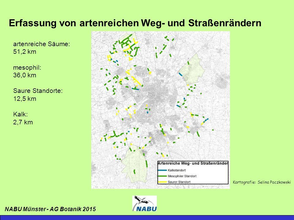 Bunte Bänder in Münster – Fotowettbewerb 2015 Mehr als sechzig Bildeinsendungen: -mit Unterstützung der Stadt Münster -Dreiköpfige Jury -Offizielle Preisverleihung mit Sachpreisen NABU Münster - AG Botanik 2015