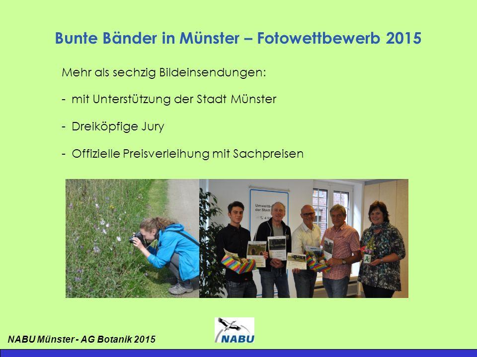 Bunte Bänder in Münster – Fotowettbewerb 2015 Platz 3: Dr.