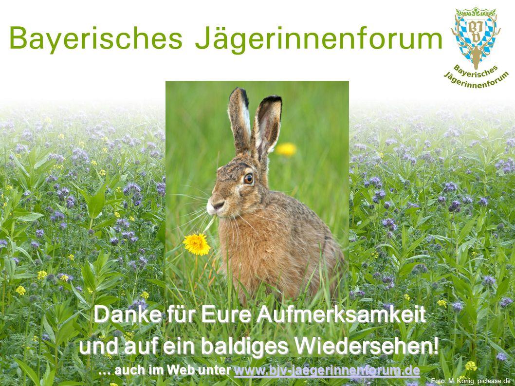 Danke für Eure Aufmerksamkeit und auf ein baldiges Wiedersehen! … auch im Web unter www.bjv-jaegerinnenforum.de www.bjv-jaegerinnenforum.de Foto: M. K