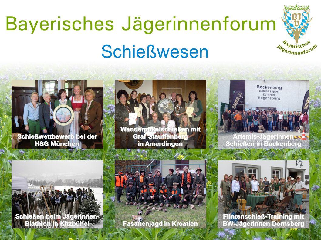 Schießwesen Artemis-Jägerinnen Schießen in Bockenberg Wanderpokalschießen mit Graf Stauffenberg in Amerdingen Schießwettbewerb bei der HSG München Fli