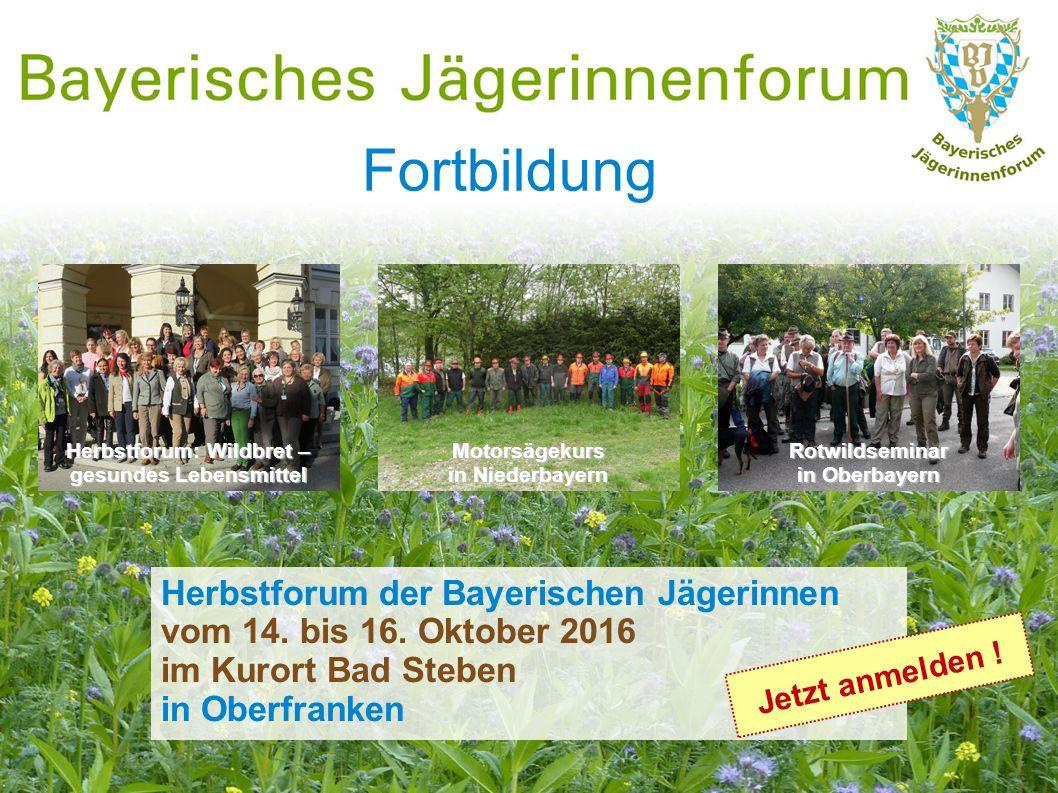 Fortbildung Herbstforum: Wildbret – gesundes Lebensmittel Rotwildseminar in Oberbayern Motorsägekurs in Niederbayern Herbstforum der Bayerischen Jäger