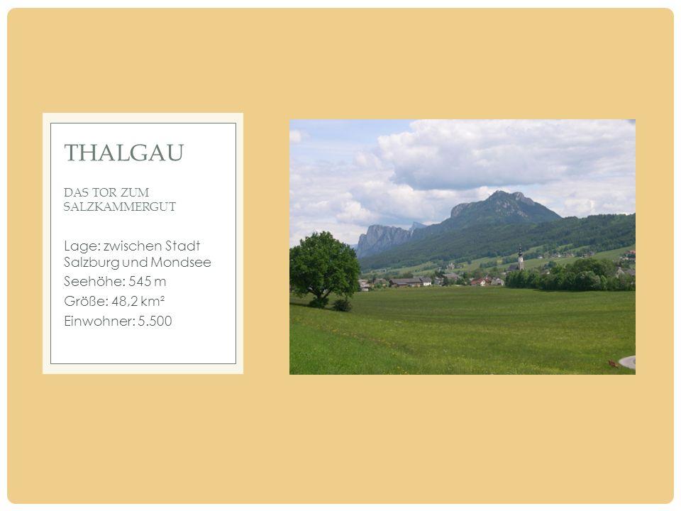 Lage: zwischen Stadt Salzburg und Mondsee Seehöhe: 545 m Größe: 48,2 km² Einwohner: 5.500 THALGAU DAS TOR ZUM SALZKAMMERGUT