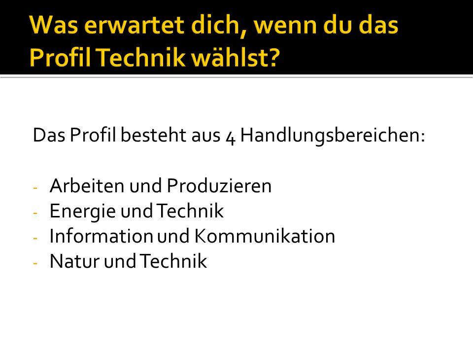 Das Profil besteht aus 4 Handlungsbereichen: - Arbeiten und Produzieren - Energie und Technik - Information und Kommunikation - Natur und Technik