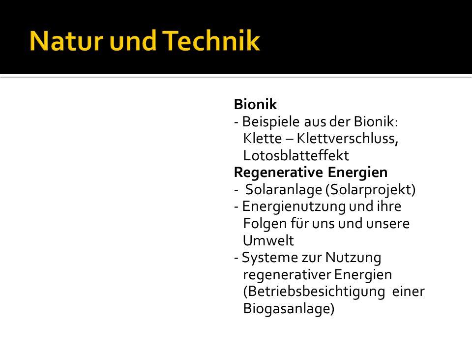 Bionik - Beispiele aus der Bionik: Klette – Klettverschluss, Lotosblatteffekt Regenerative Energien - Solaranlage (Solarprojekt) - Energienutzung und