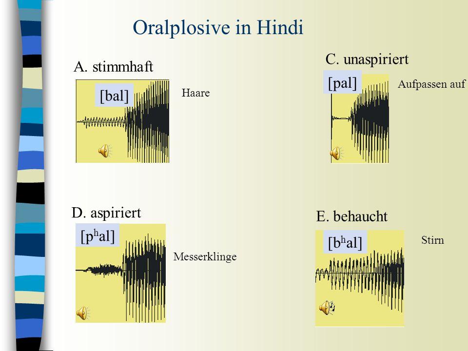 Voice Onset Time (VOT) = Die Dauer zwischen der Lösung vom Plosiv und dem Beginn der Periodizität /t/ in 'Tank' /d/ in 'Dank' VOT