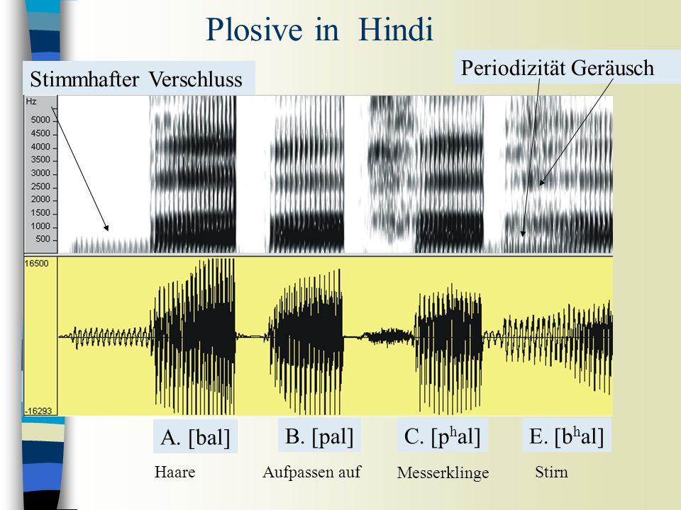 Oralplosive in Hindi Aufpassen auf Messerklinge Haare [bal] [pal] [p h al] A.