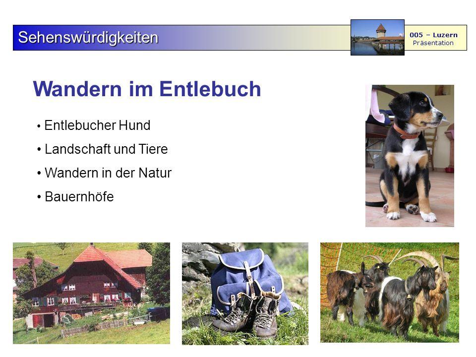 Wandern im Entlebuch Sehenswürdigkeiten 005 – Luzern Präsentation Entlebucher Hund Landschaft und Tiere Wandern in der Natur Bauernhöfe