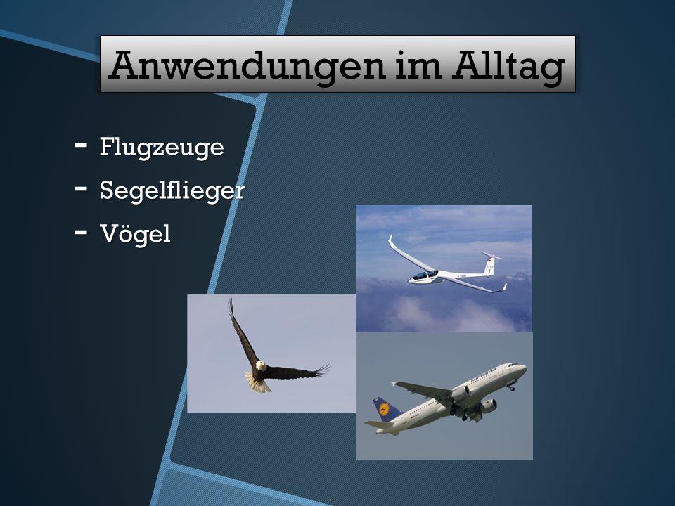 Anwendungen im Alltag - Flugzeuge - Segelflieger - Vögel