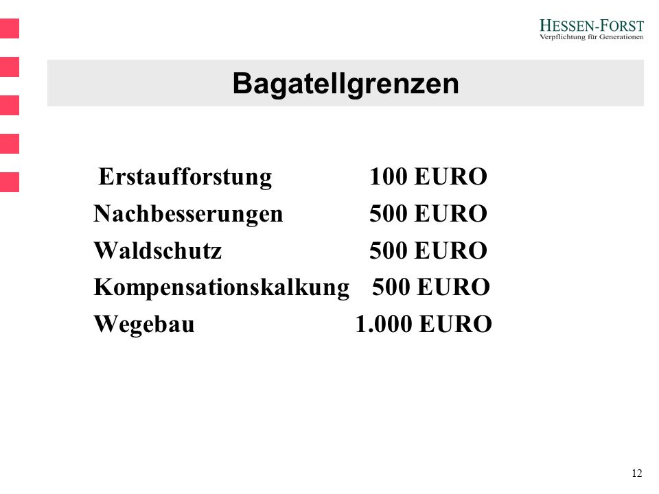 12 Bagatellgrenzen Erstaufforstung100 EURO Nachbesserungen500 EURO Waldschutz500 EURO Kompensationskalkung 500 EURO Wegebau 1.000 EURO