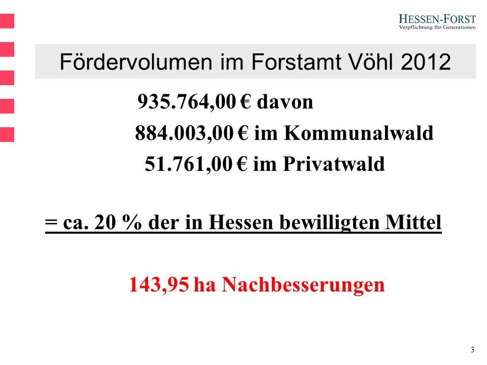 3 Fördervolumen im Forstamt Vöhl 2012 935.764,00 € davon 884.003,00 € im Kommunalwald 51.761,00 € im Privatwald = ca.