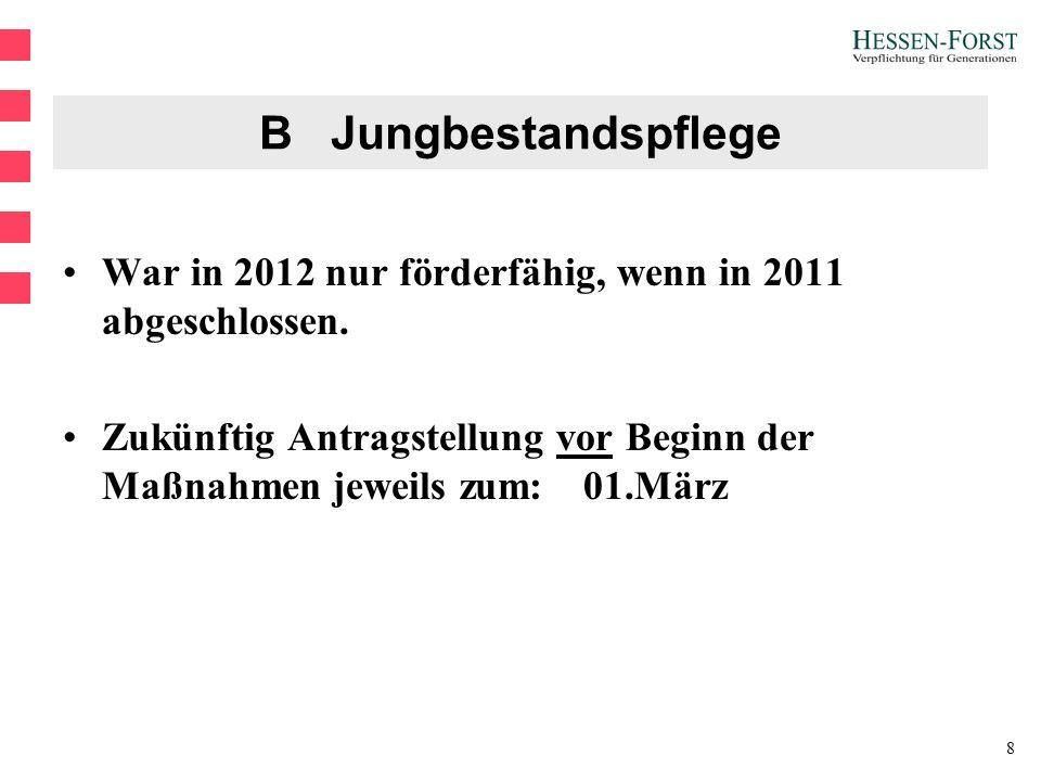 8 B Jungbestandspflege War in 2012 nur förderfähig, wenn in 2011 abgeschlossen.