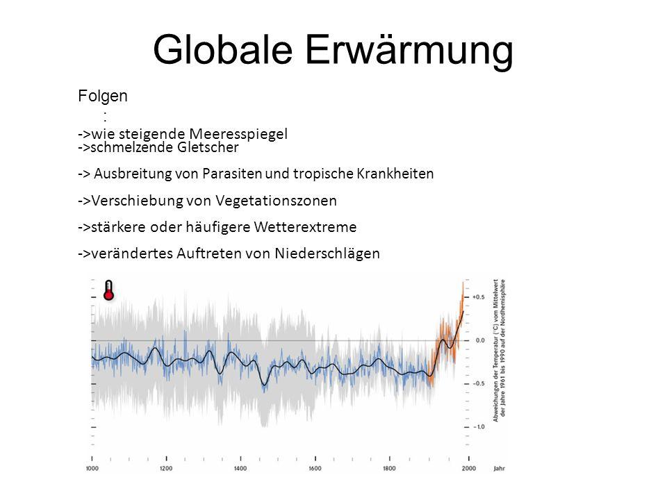 Globale Erwärmung Folgen : ->wie steigende Meeresspiegel ->schmelzende Gletscher -> Ausbreitung von Parasiten und tropische Krankheiten ->Verschiebung