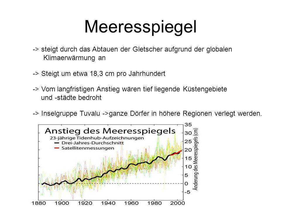 Meeresspiegel -> steigt durch das Abtauen der Gletscher aufgrund der globalen Klimaerwärmung an -> Steigt um etwa 18,3 cm pro Jahrhundert -> Vom langf