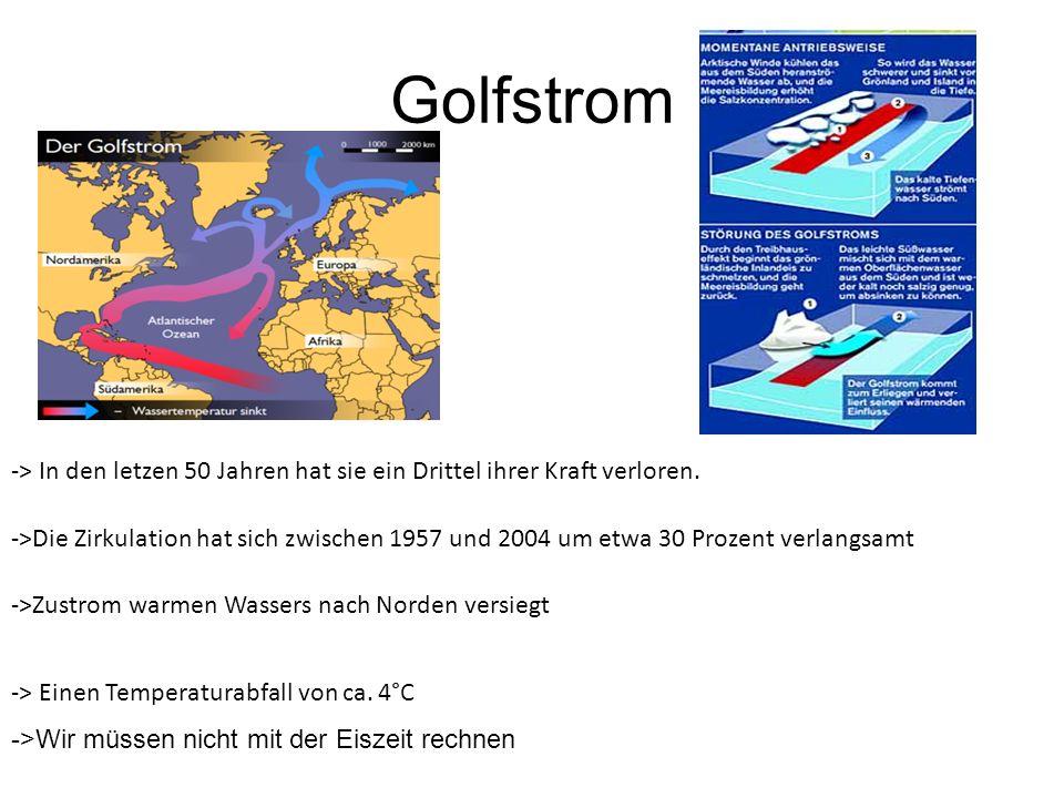 Golfstrom ->Wir müssen nicht mit der Eiszeit rechnen ->Die Zirkulation hat sich zwischen 1957 und 2004 um etwa 30 Prozent verlangsamt -> In den letzen