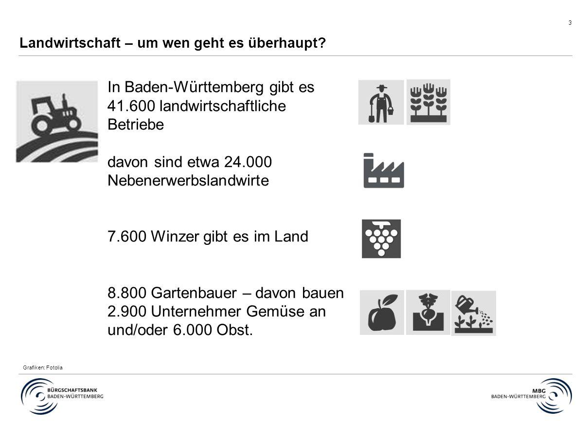 3 Landwirtschaft – um wen geht es überhaupt? In Baden-Württemberg gibt es 41.600 landwirtschaftliche Betriebe davon sind etwa 24.000 Nebenerwerbslandw