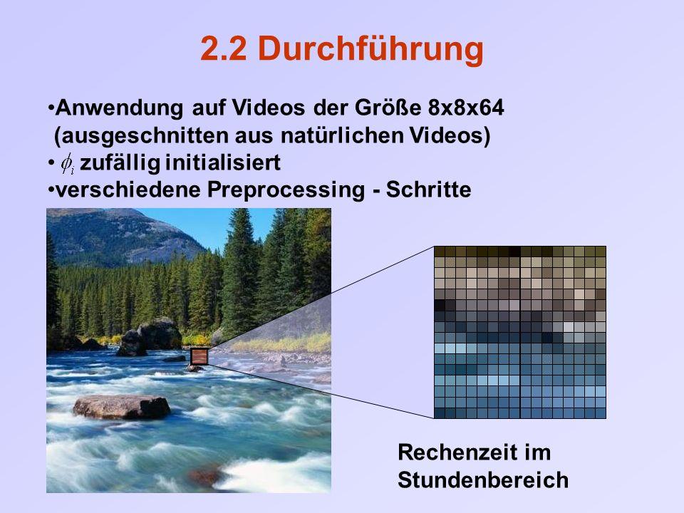Anwendung auf Videos der Größe 8x8x64 (ausgeschnitten aus natürlichen Videos) zufällig initialisiert verschiedene Preprocessing - Schritte 2.2 Durchfü