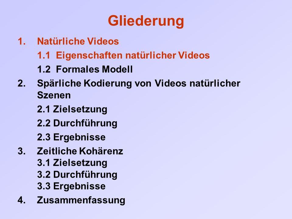 """1 Eigenschaften natürlicher Videos Was unterscheidet ein zufällig generiertes Video von einem """"natürlichen ?"""