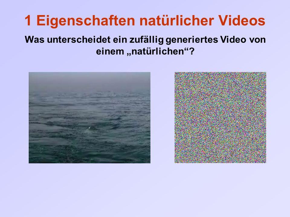 """1 Eigenschaften natürlicher Videos Was unterscheidet ein zufällig generiertes Video von einem """"natürlichen"""