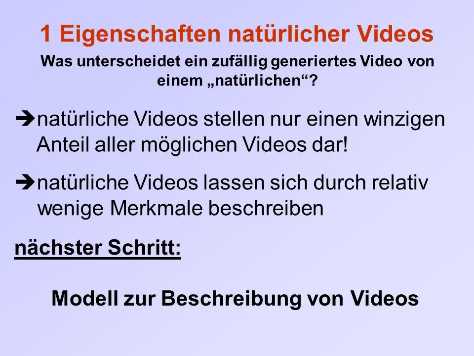 """1 Eigenschaften natürlicher Videos Was unterscheidet ein zufällig generiertes Video von einem """"natürlichen""""?  natürliche Videos stellen nur einen win"""