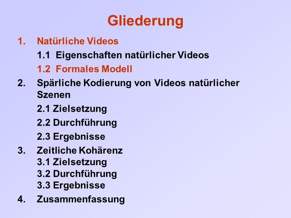 4 Zusammenfassung Sparse Coding: - natürliche Videos lassen sich durch relativ wenige Merkmale beschreiben.
