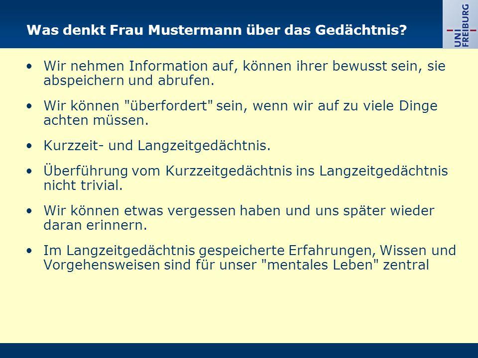 Was denkt Frau Mustermann über das Gedächtnis? Wir nehmen Information auf, können ihrer bewusst sein, sie abspeichern und abrufen. Wir können