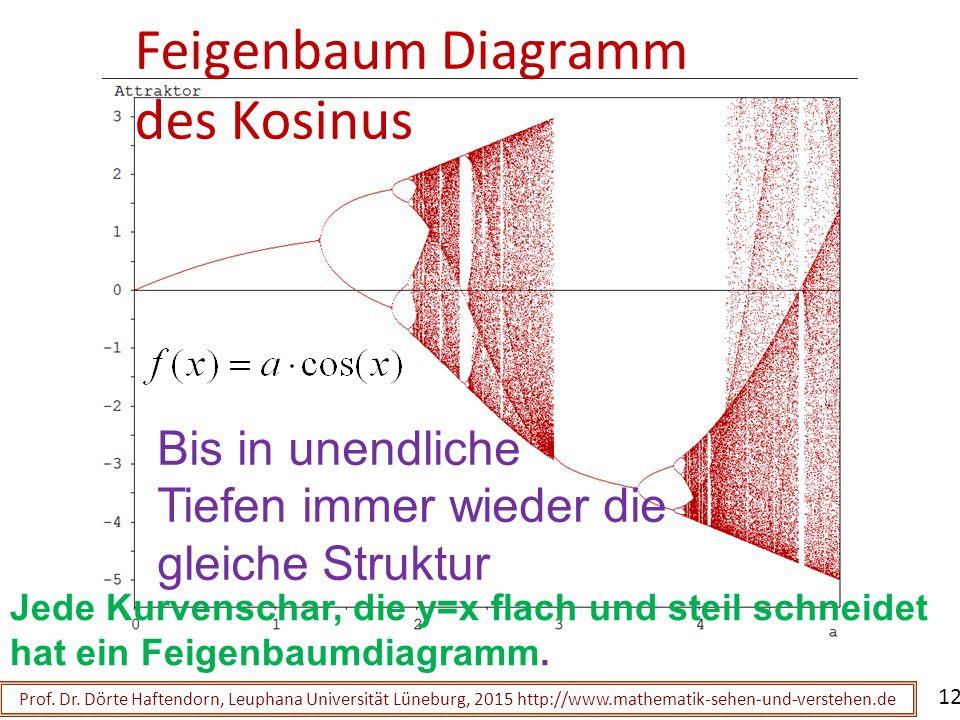 Feigenbaum Diagramm des Kosinus Prof. Dr. Dörte Haftendorn, Leuphana Universität Lüneburg, 2015 http://www.mathematik-sehen-und-verstehen.de 12 Bis in