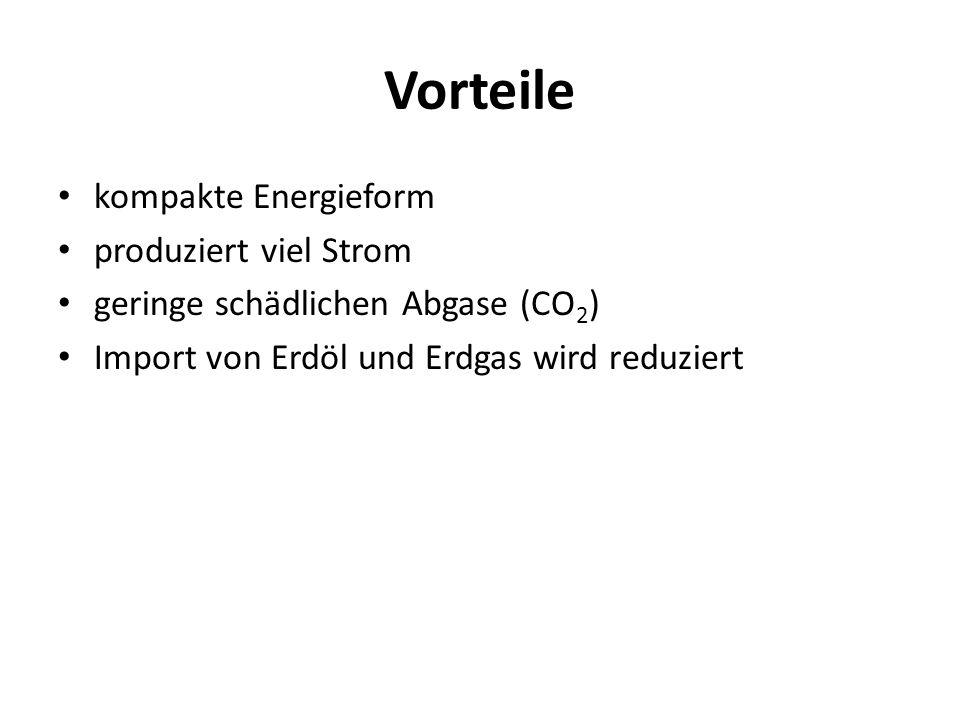 Vorteile kompakte Energieform produziert viel Strom geringe schädlichen Abgase (CO 2 ) Import von Erdöl und Erdgas wird reduziert