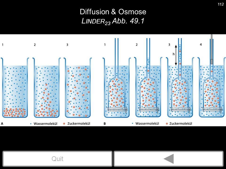 Diffusion & Osmose L INDER 23 Abb. 49.1 112 Quit