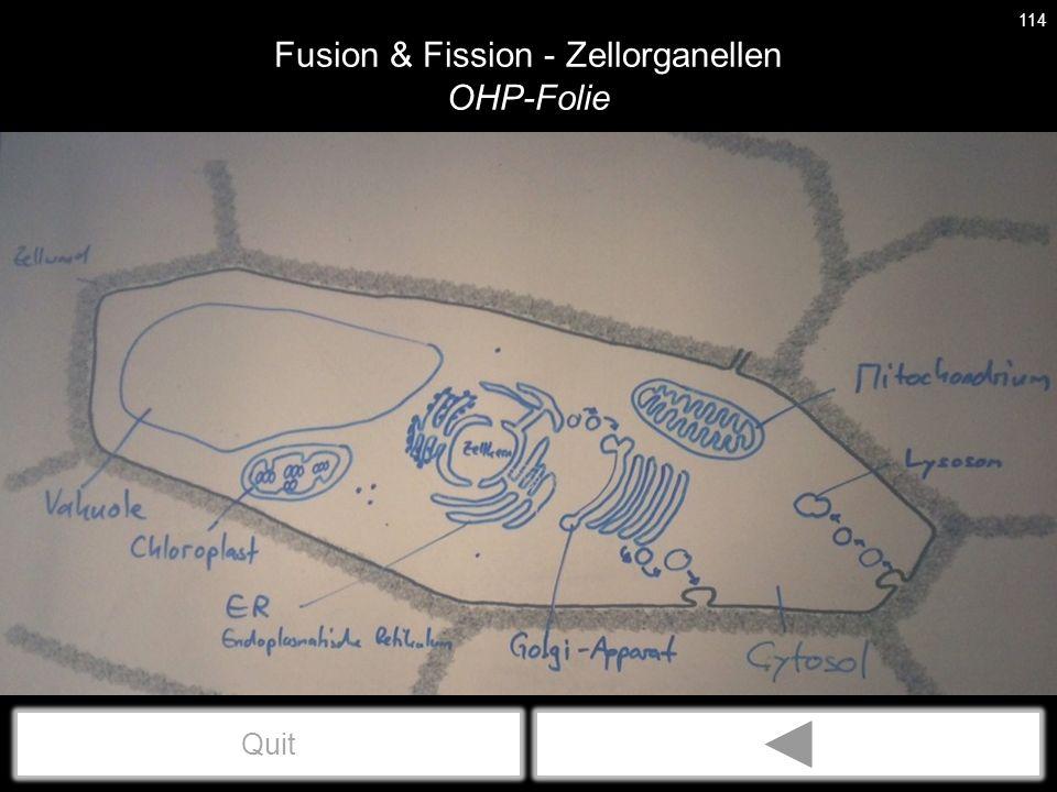 Fusion & Fission - Zellorganellen OHP-Folie 114 Quit