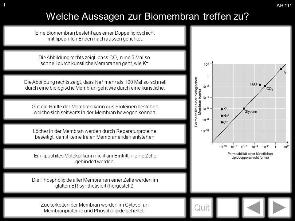 a Welche Aussagen zur Biomembran treffen zu.
