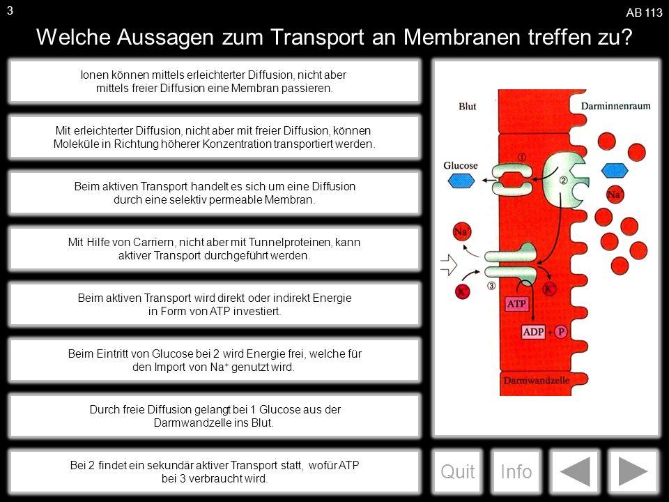 a Welche Aussagen zum Transport an Membranen treffen zu.