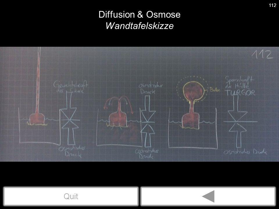 Diffusion & Osmose Wandtafelskizze 112 Quit