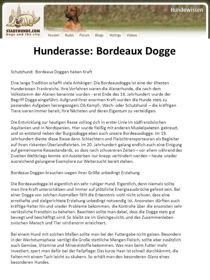 Hunderasse: Bordeaux Dogge Schutzhund: Bordeaux Doggen haben Kraft Eine lange Tradition schafft viele Anhänger: Die Bordeauxdogge ist eine der älteste