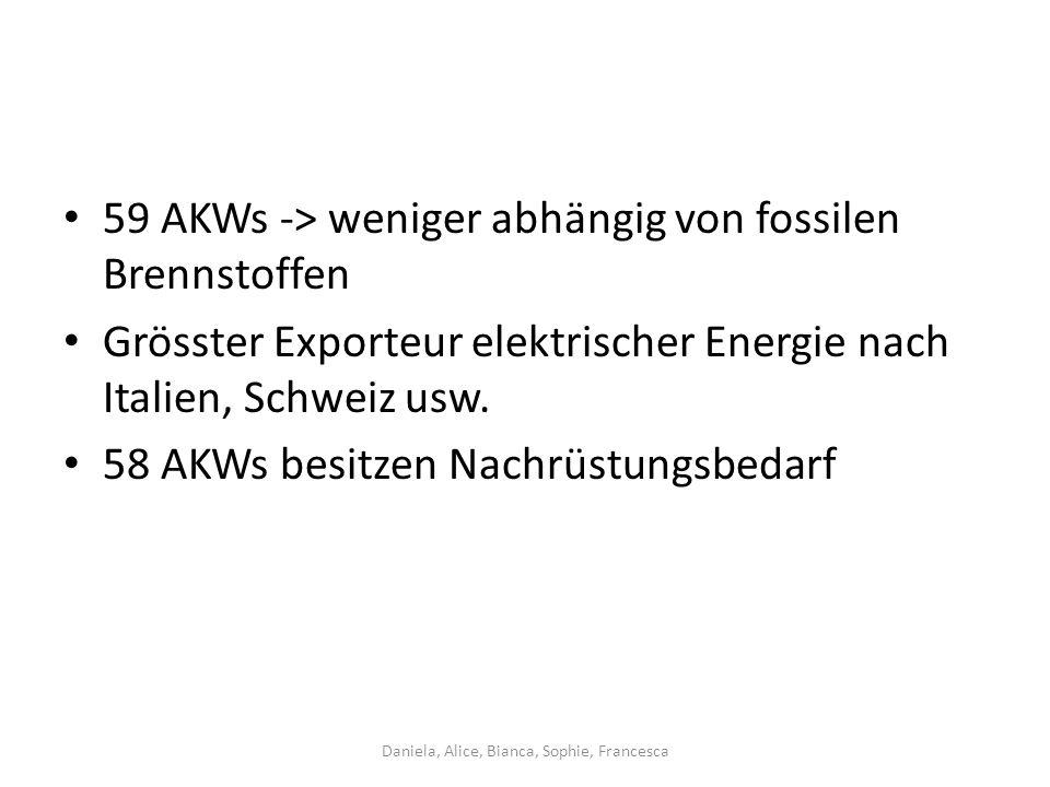 59 AKWs -> weniger abhängig von fossilen Brennstoffen Grösster Exporteur elektrischer Energie nach Italien, Schweiz usw.