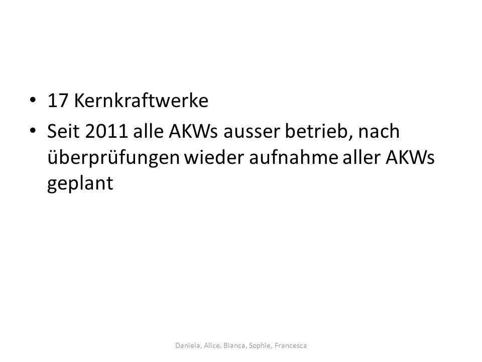 17 Kernkraftwerke Seit 2011 alle AKWs ausser betrieb, nach überprüfungen wieder aufnahme aller AKWs geplant Daniela, Alice, Bianca, Sophie, Francesca