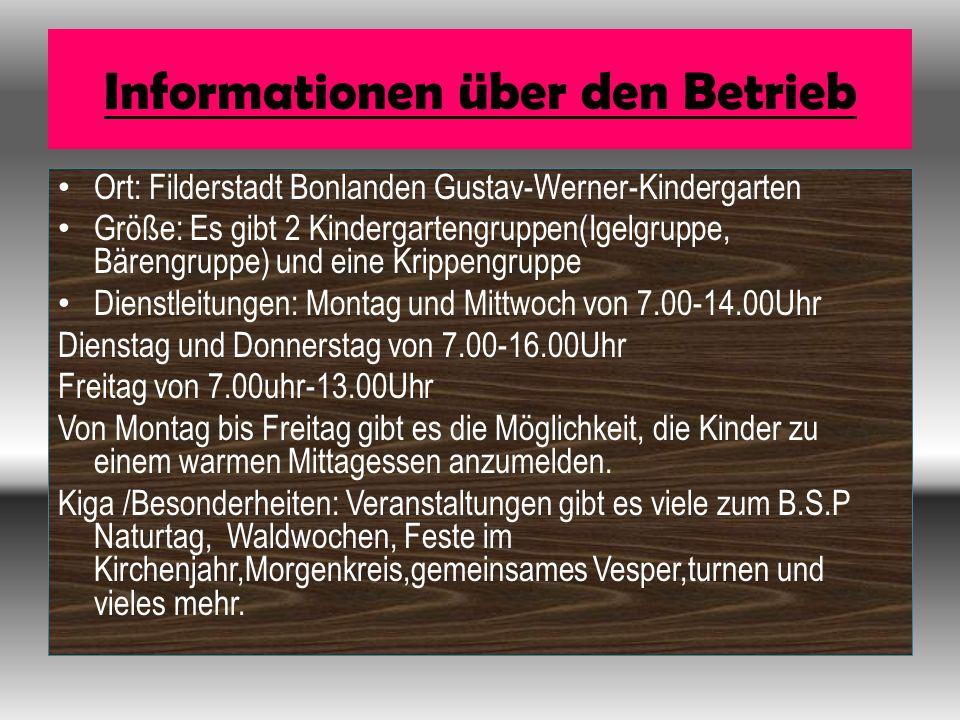 Informationen über den Betrieb Ort: Filderstadt Bonlanden Gustav-Werner-Kindergarten Größe: Es gibt 2 Kindergartengruppen(Igelgruppe, Bärengruppe) und