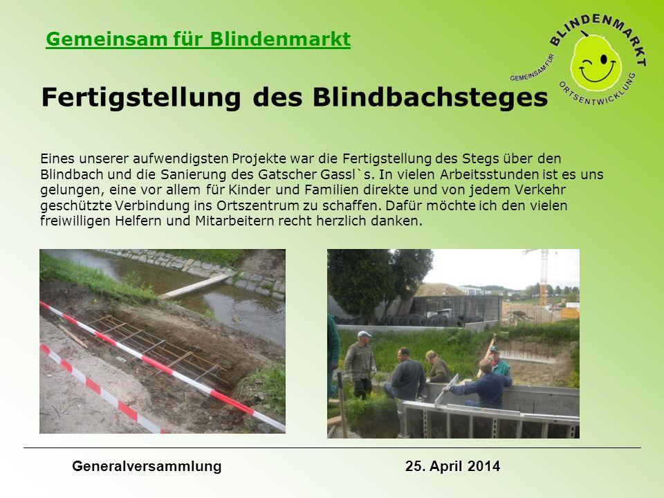 Gemeinsam für Blindenmarkt Fertigstellung des Blindbachsteges Eines unserer aufwendigsten Projekte war die Fertigstellung des Stegs über den Blindbach und die Sanierung des Gatscher Gassl`s.